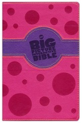 The Big Picture Interactive Bible: Connecting Christ Throughout God's Story, Pink and Purple Leathertouch