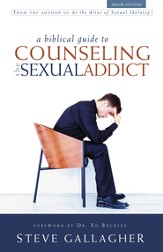 A Biblical Guide to Counseling the Sex Sex Addict - eBook