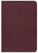 Gift & Award Bible-RVR 1960, Imitation Leather, Burgundy