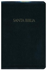 RVR 1960 Biblia Letra Grande Tamaño Manual, negro imitación piel, RVR 1960 Hand-Size Large-Print  Reference         Bible, Black Imitation Leather