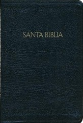 RVR 1960 Large Print Reference Bible Black
