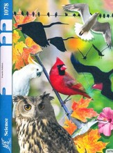 Science PACE 1078, Grade 7 (4th Edition)