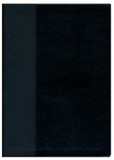 NLT Every Man's Large-Print Bible--imitation leather, black/onyx