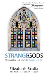Strange Gods: Unmasking the Idols in Everyday Life - eBook