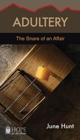 Adultery: The Snare of an Affair - eBook