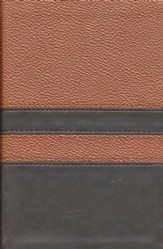NIV Men's Devotional Bible, Compact, Italian Duo-Tone, Walnut/Espresso - Imperfectly Imprinted Bibles