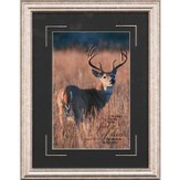 He Makes My Feet Like Feet of Deer Framed Print