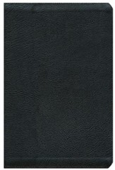 NIV Thinline Zippered Collection Bible, Large Print, Black