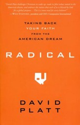 Radical: Taking Back Your Faith from the American Dream (slightly imperfect)