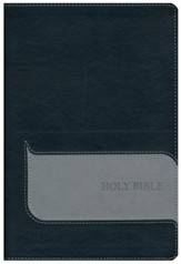 NIV Understand the Faith Study Bible--imitation leather, black/gray
