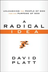 A Radical Idea: Unleashing the People of God for the Purpose of God, 10 copies - Slightly Imperfect