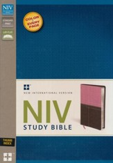 NIV Study Bible--soft leather-look, berry creme/chocolate - Slightly Imperfect