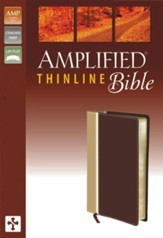 Amplified Thinline Bible, Camel/Burgundy