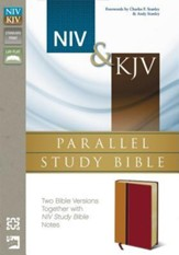 NIV & KJV Parallel Study Bible: Imitation Leather,  Amber and Rich Red