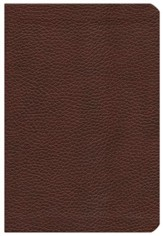 NIV Life Application Study Bible, Bonded Leather, Burgundy - Imperfectly Imprinted Bibles