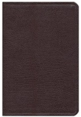 NIV Life Application Study Bible, Bonded Leather, Burgundy, Indexed - Imperfectly Imprinted Bibles