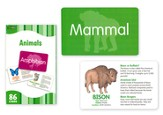 Animals, Flash Cards