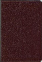 NIV Compact Thinline Bible, Burgundy
