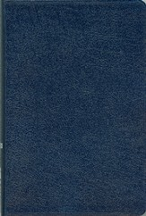 NIV Compact Thinline Bible, Navy