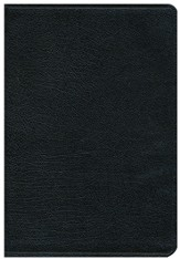 NIV Thinline Large-Print Bible--top grain leather, black