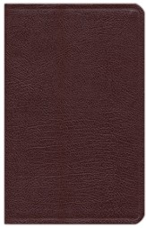 NIV Thinline, Compact, Reference Bible, Burgundy