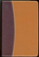 NIV Thinline, Compact, Reference Bible, Tan/Burgundy