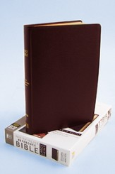 NIV Thinline Reference, Burgundy, Thumb-Indexed  - Imperfectly Imprinted Bibles