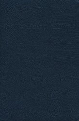 NIV Thinline Reference, Navy, Thumb-Indexed  - Imperfectly Imprinted Bibles