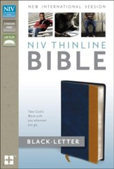 NIV Thinline Bible, Italian Duo-Tone, Blue/Tan  - Imperfectly Imprinted Bibles