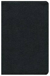 NIV Study Bible, Top Grain Leather, Black  - Imperfectly Imprinted Bibles