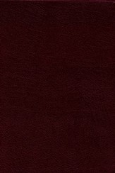 NIV Study Bible, Bonded Leather, Burgundy, Thumb Indexed