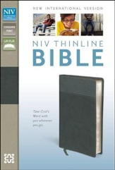 NIV Thinline Bible, Imitation Leather, Black & Gray