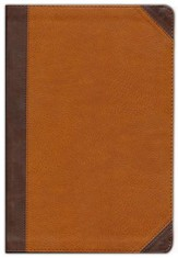 NIV Zondervan Study Bible, Large Print, Imitation Leather, Brown/Tan Indexed