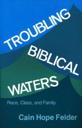 Troubling Biblical Waters: Race, Class, and Family  Biship Henry McNeal Turner Studies, Vol. 3