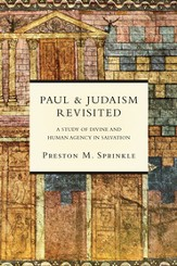 Paul and Judaism Revisited: A Study of Divine and Human Agency in Salvation - eBook