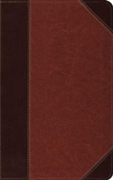 ESV Thinline Trutone Bible, brown/cordovan with portfolio design, Imitation Leather