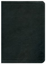 ESV Ryrie Study Bible, Black Calfskin Leather, Thumb Indexed