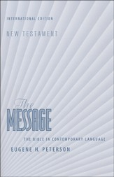 The Message NT (International Edition) Softcover