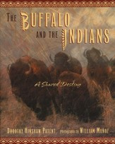 Buffalo And Indians