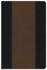 NKJV Summary Bible, Black and Brown LeatherTouch