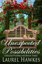 Endless Possibilities Book Three: Unexpected Possibilities - eBook