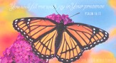 2014-2015 Pocket Calendar, Butterfly