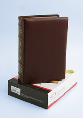 ESV Study Bible, Premium Calfskin Leather, Cordovan - Slightly Imperfect