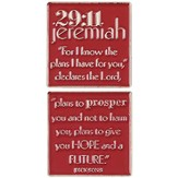 Jeremiah 29:11 Pocket Stone