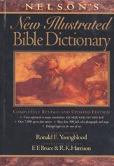 Nelson's New Illustrated Bible Dictionary  - Slightly Imperfect