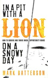In a Pit with a Lion on a Snowy Day (slightly imperfect)