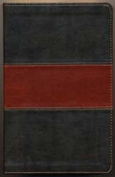 ESV Thinline Bible TruTone, Forest/Tan, Trail Design