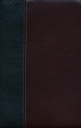 ESV Vintage Thinline Bible (Black/Chestnut, Vintage Design)