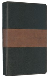 ESV Thinline Bible (TruTone, Black/Tan, Trail Design)