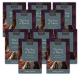 The Son of David 10-Pack: Seeing Jesus in the Historical Books